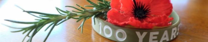 100 years 1048 214